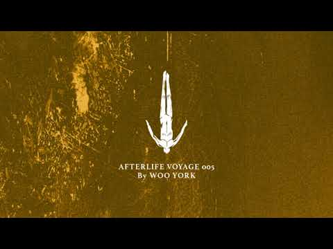 Afterlife Voyage 005 by Woo York