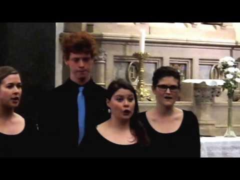 NEW DUBLIN VOICES choir