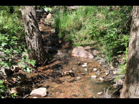 Cherry Gulch Trail