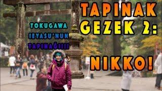 Japonya'nın En Gösterişli Tapınağı: Nikko Tosho-gu! ||JAPONYA'DA OKUYORUM