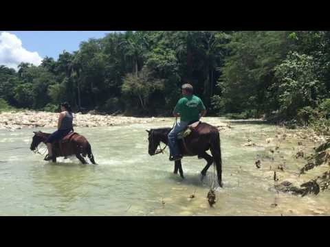 Rivercross Horseback Riding, San Felipede De Puerto Plata, Dominican Republic