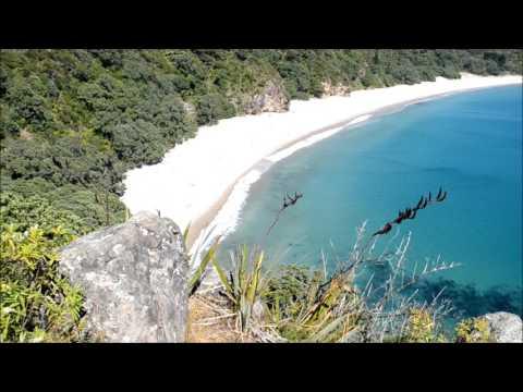Whangapoua And New Chums Beach Feb 5th  2017
