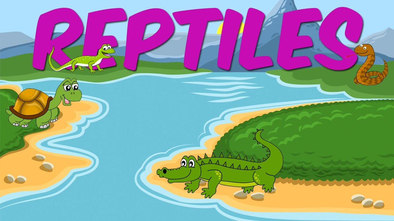 Reptiles - Learn About Animals For Kids - YouTube