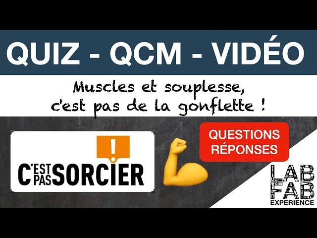Quiz - QCM - Muscles et Souplesse, ce n'est pas de la gonflette - C'est pas sorcier