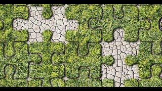 ICCW presentatie  Benefiet Snippergrond (Berbers)