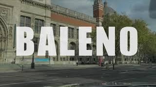 | 발레노 | 유럽 명…
