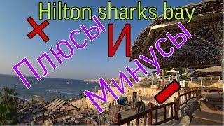 HILTON SHARKS BAY ЕГИПЕТ ПЛЮСЫ И МИНУСЫ