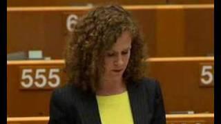 Sophia In 'T Veld on EU-United States summit