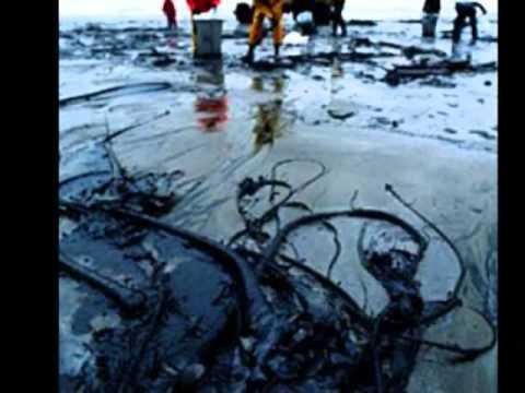 BP Oil Spill Tribute