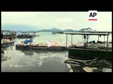 Hundreds Of Tons Of Fish Die At Fish Farm As Temperature Changes