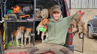rat city ratting with terriers