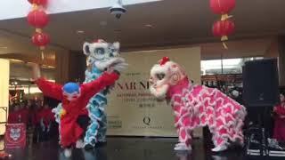 New York Hung Sung Kwoon Lion Dance at Queens Center Mall