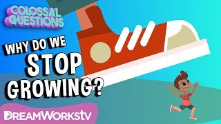 Why Do We Stop Growing? | COLOSSAL QUESTIONS