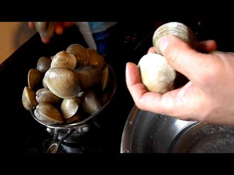How to remove sand from clams