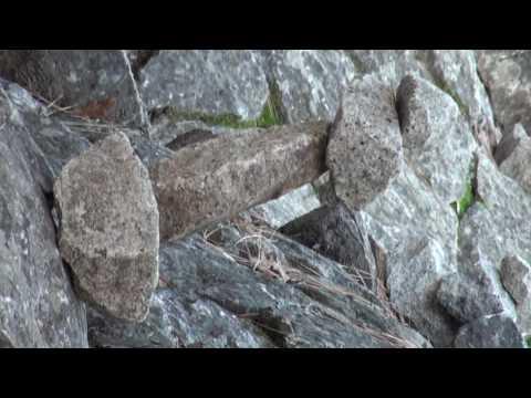 4 Rocks High Rock Cairin Yosemite