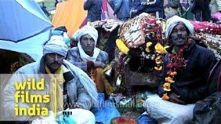 Devotees take a break during Nanda Devi Raj Jat Yatra - Uttarakhand