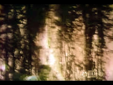Wildfire (1978)