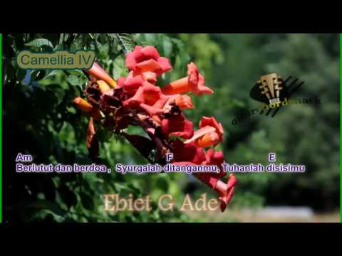 Chord Ebiet G Camelia IV  Kord Gitar Ebiet   Lagu dan Lirik