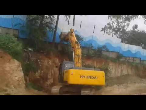 Coconut tree cutting in construction