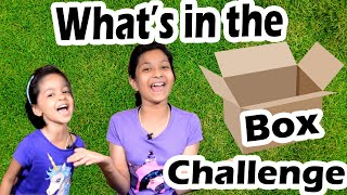 What's in the Box Challenge | Blindfold Challenge | Cute Sisters