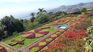 От Галины.Мадейра. Ботанический сад. Райское место.Советы туристам.Ratgeber.