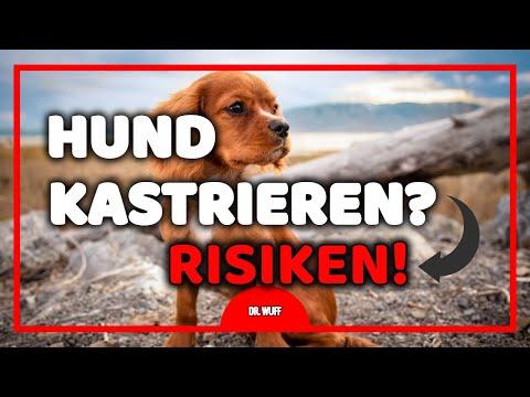 Märklin my world Startpackung Feuerwehr - Kinderspielzeug from YouTube · Duration:  21 seconds