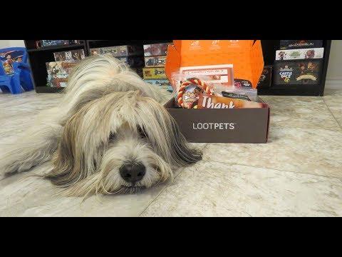 Loot Pets Unboxing December 2017