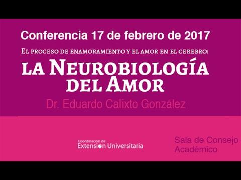NEUROBIOLOGIA DEL AMOR PDF DOWNLOAD