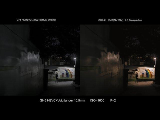 Panasonic GH5 HLG Driftwood Rec2020 to Rec709 LUT Test