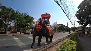 ✈️ Стоит ли ехать в Таиланд ? 💥 Аюттайя - бывшая столица Сиама 💥