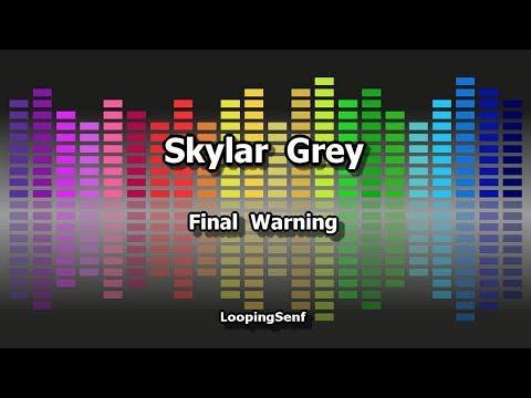 Skylar Grey - Final Warning - Karaoke