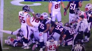 Brandon Spikes celebration