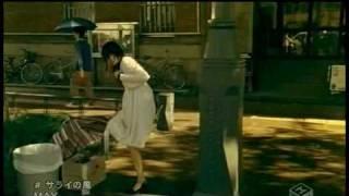 MAY - サライの風