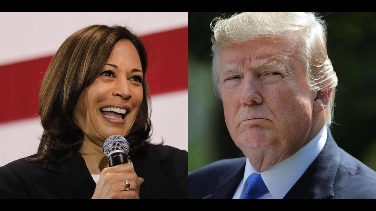 Trump Wins Reelection from Kamala Harris 1,000 Cases Dropped Due to Systemic Prosecutor Misconduct