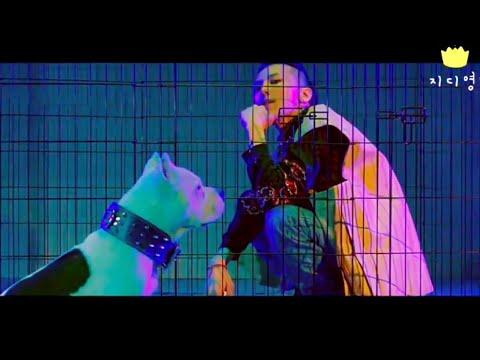 G-DRAGON(지드래곤) - BULLSHIT(개소리) Music Video & Concert Mash Up FMV ENG SUB