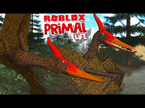 Primal Life Roblox - Jogando Com Pteranodon, Grandes Novidades! | Dinossauros (#17) (PT-BR)