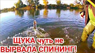 Рыбалка с Ночевкой в Октябре с Комфортом на Базе Отдыха.Жаренный Судак.Щука на отводной