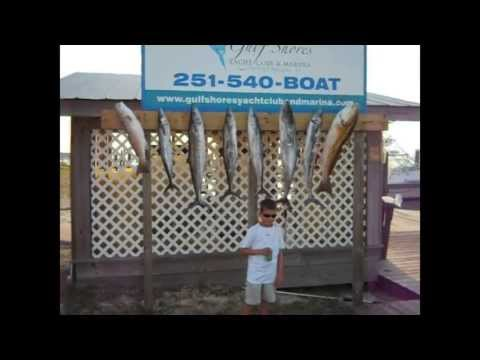Gulf Shores / Orange Beach Fishing Charter Captain Ronnie Black Reel Attraction Charters