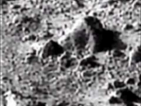 Mars Extraterrestrial Humans, Horses and Possible Bear