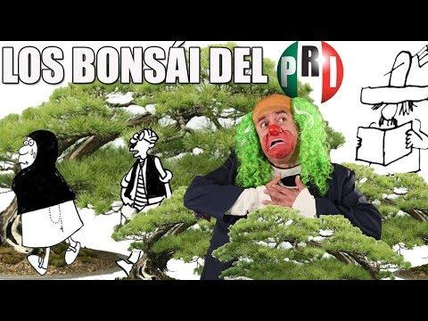 BROZO DESPIDE A RIUS CON APLAUSOS/ LISTA DE BONSAI EN EL PRI