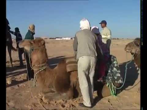 Tunisia, winter 2007-8