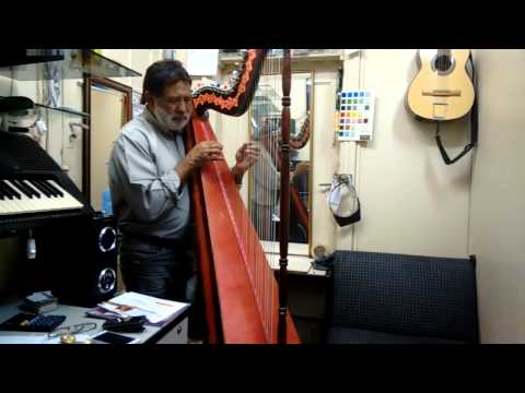 Harpa Paraguaia | Zé da Viola