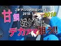 【相模湾アマダイ】城ケ島でデカアマ狙う!!(2018/01/02)