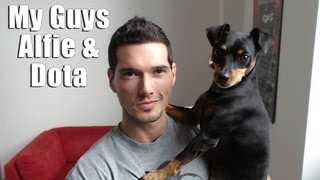 Meet My Dogs Alfie (mini Pinscher) & Dota (doberman)