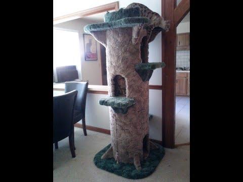 Huge 6ft Tall Cat Tree Homebrew DIY - Aka
