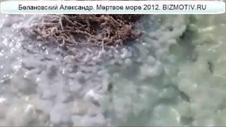Что такое мертвое море