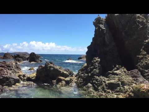 A Short Adventure Video from our Caribbean Cruise