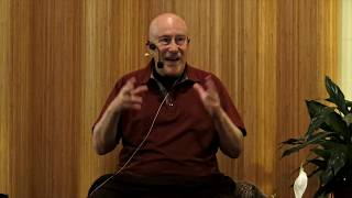 Gambar cover How Would You Describe Enlightenment? ~ Shinzen Young answers