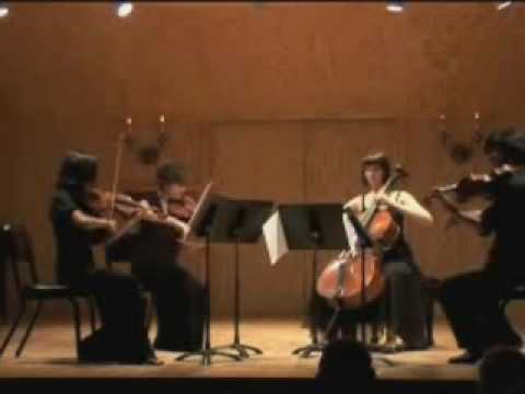Dohnanyi String Qt. #3 in A Minor 1st mvt. part 1