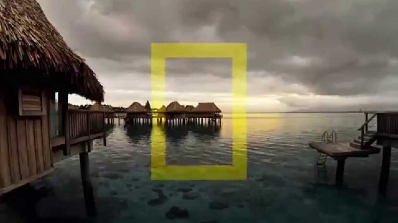 National Geographic Channel Network ID - YouTube